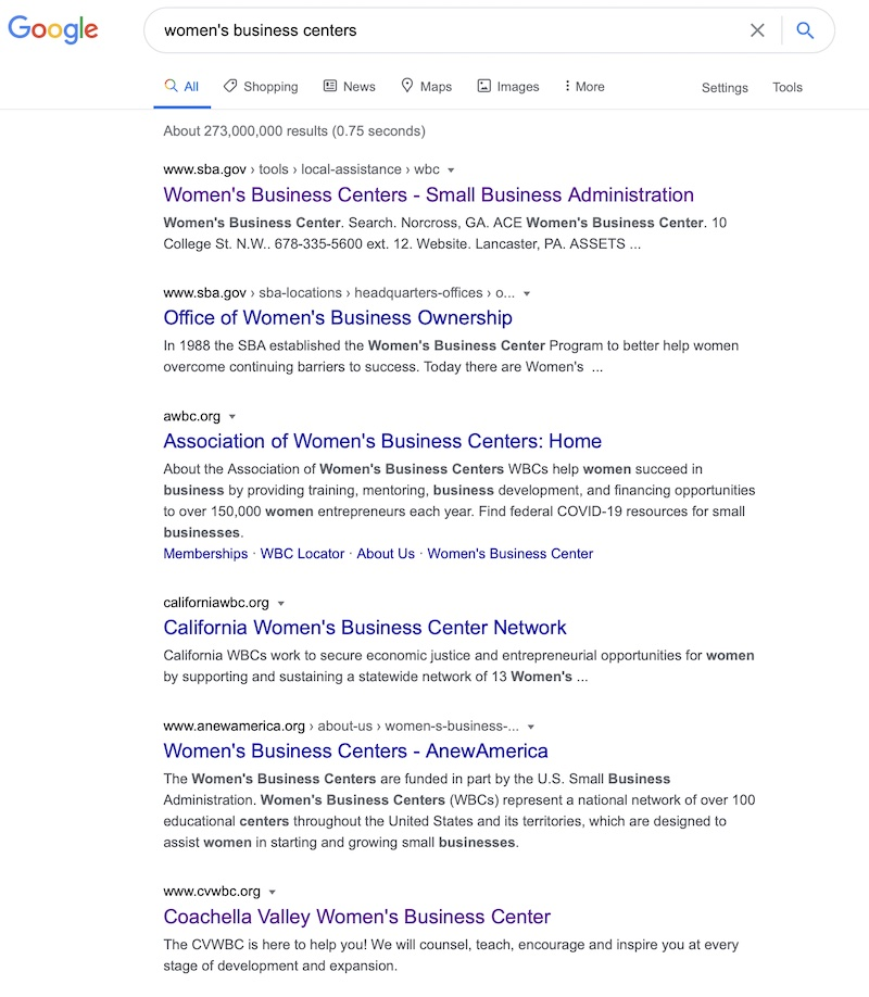 "pic of Google search results for ""Women's Business Centers,"" which brought up pages and pages of organizations dedicated to providing assistance to women-owned businesses."